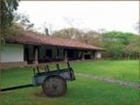 Farm For Sale In Canas, Guanacaste