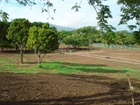 16528 Sqm Excellent And Spacious Lot For Sale In San Rafael De Alajuela