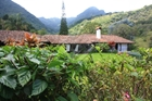 1515 - Spanish Colonial Style Coffee Estate in Escazu