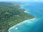 858 Acre Ocean View Parcel In Portalon