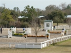 Magnificent Horse Farm - Polo